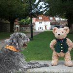 Come and meet Binky Bear